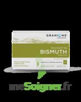 GRANIONS DE BISMUTH 2 mg/2 ml S buv 10Amp/2ml à BOURG-SAINT-MAURICE