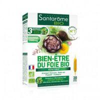 Santarome Bio Bien-être du foie Solution buvable 20 Ampoules/10ml à BOURG-SAINT-MAURICE