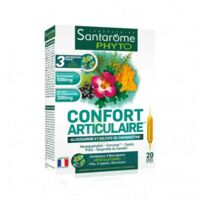 Santarome Bio Confort articulaire Solution buvable 20 Ampoules/10ml à BOURG-SAINT-MAURICE