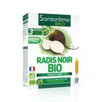 Santarome Bio Radis noir Solution buvable 20 Ampoules/10ml à BOURG-SAINT-MAURICE