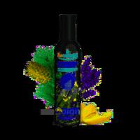Puressentiel Diffusion Parfum d'ambiance – Douceur de Provence – 90 ml à BOURG-SAINT-MAURICE