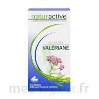 ELUSANES VALERIANE 200 mg, gélule Pilul/30 à BOURG-SAINT-MAURICE