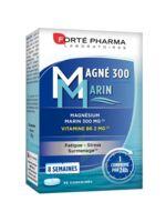 Magné 300 Marin (2 mois) à BOURG-SAINT-MAURICE