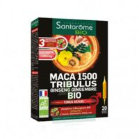 Santarome Bio Maca 1500 Tribulus Ginseng Gingembre Solution buvable 20 Ampoules/10ml à BOURG-SAINT-MAURICE