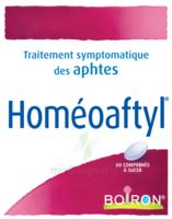 Boiron Homéoaftyl Comprimés à BOURG-SAINT-MAURICE