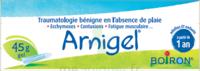 Boiron Arnigel Gel T/45g à BOURG-SAINT-MAURICE
