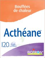 Boiron Acthéane Comprimés B/120 à BOURG-SAINT-MAURICE